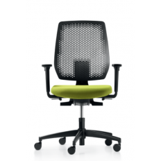 Dauphin Speed-O Chair