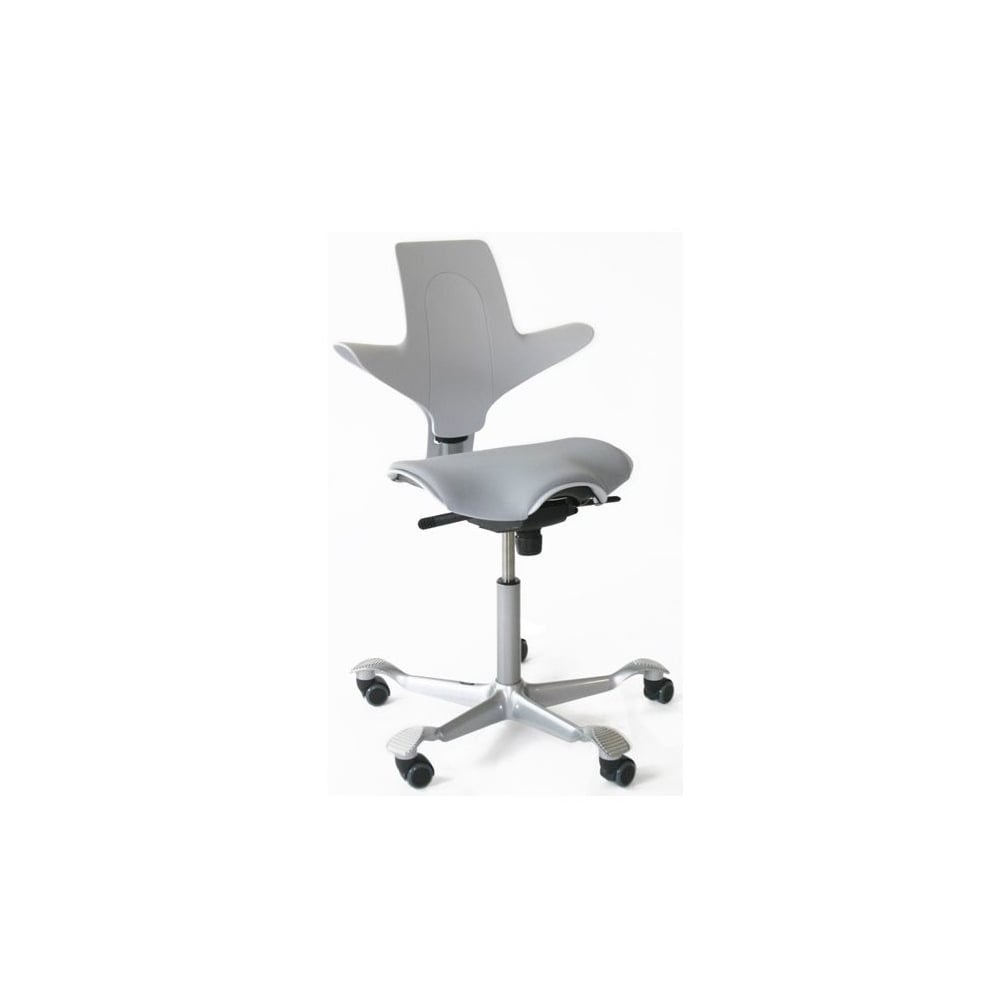 Hag Capisco Puls 8020 Chair : hag capisco puls 8020 chair p488 5539image from www.wellworking.co.uk size 1000 x 1000 jpeg 15kB
