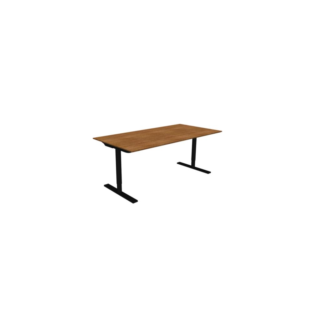 Holmris Q10 Height Adjustable Desk